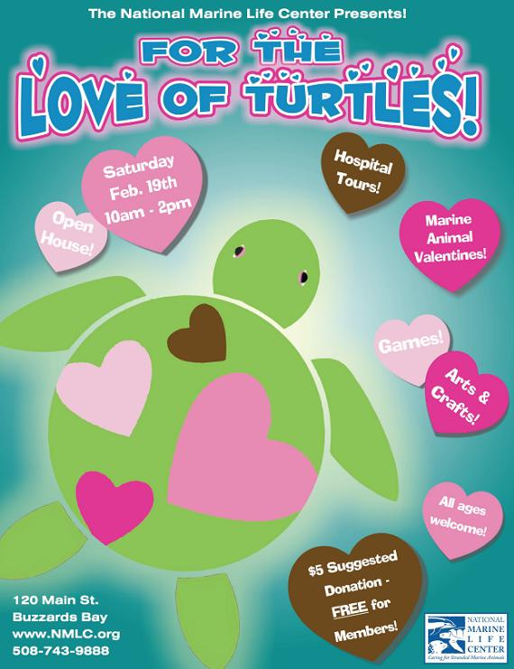 For the Love of Turtles Open House