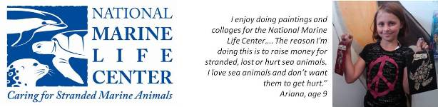 National Marine Life Center's Children's Challenge